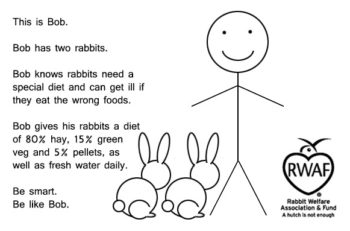 This is Bob. Bob has two rabbits. Bob knows rabbits need a special diet and can get ill if they eat the wrong foods. Bob gives his rabbits a diet of 80% hay, 15% green veg and 5% pellets, as well as fresh water daily. Be smart. Be like Bob