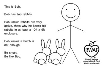 This is Bob. Bob has two rabbits. Bob knows rabbits are very active, thats why he keeps his rabbits in at least a 10ft x 6ft enclosure. Bob knows a hutch is not enough. Be smart. Be like Bob