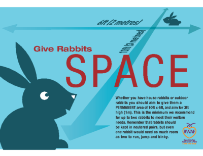 Give Rabbits Space
