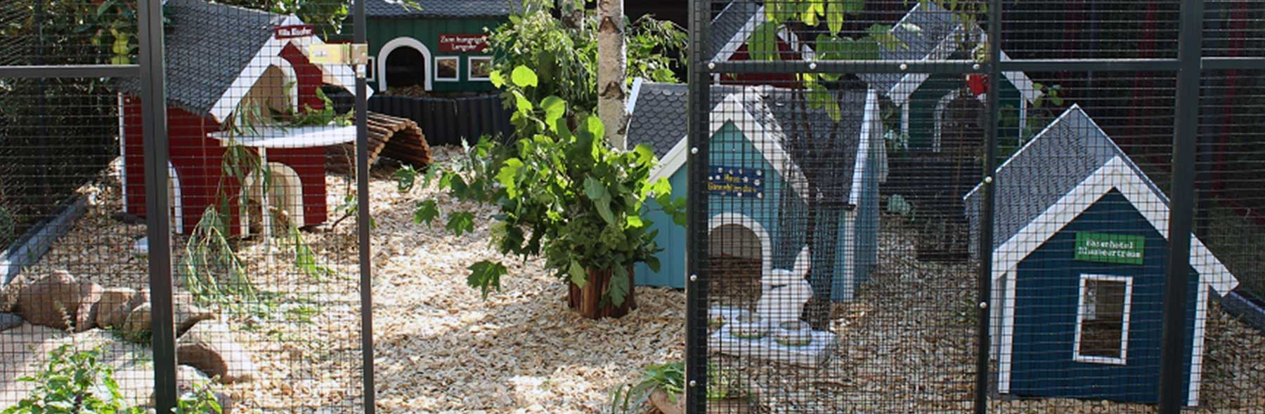 Outdoor Housing – Rabbit Welfare Association & Fund (RWAF)
